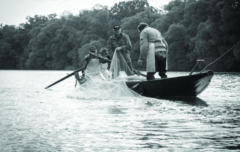 Dunaradványi halászok 1