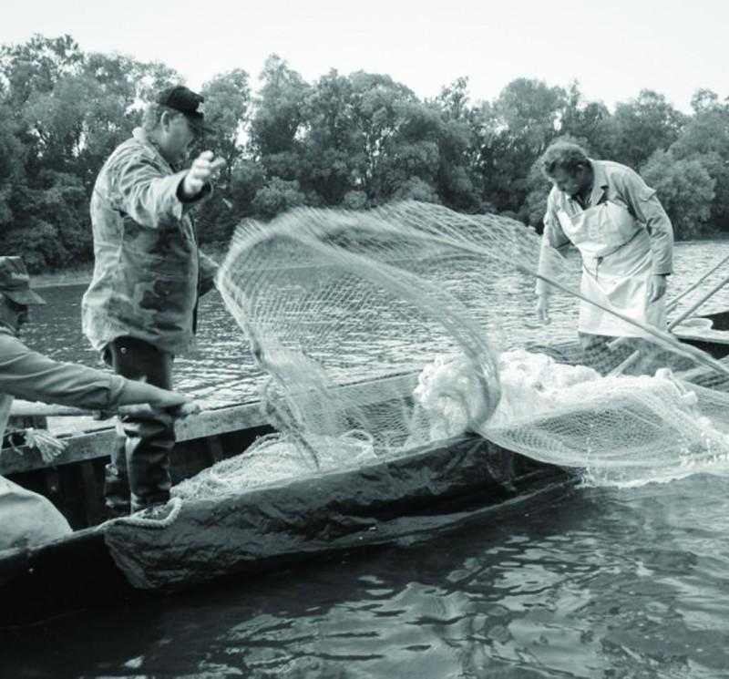 Dunaradványi halászok 2