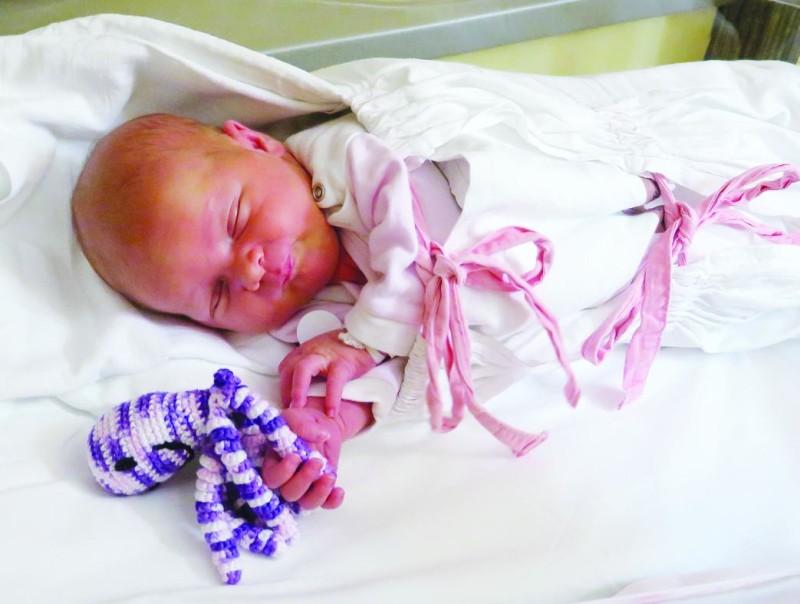 Chobotničky v komárňanskej nemocnici strážia bábätká