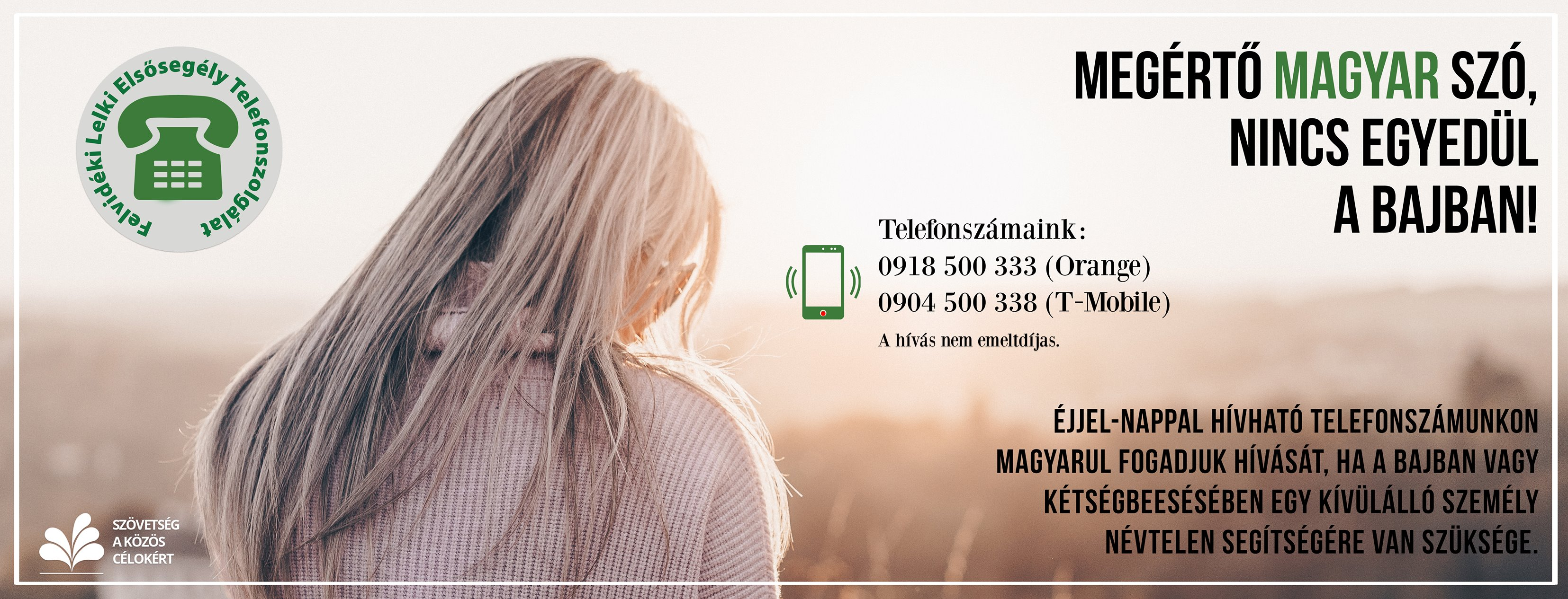 53397792_2264465993876494_6420412418832203776_o