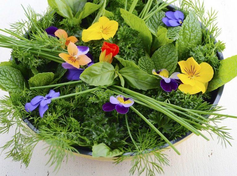 Ehető virágok 1